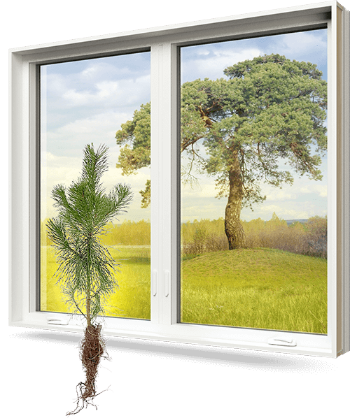 A PVC window with a tree root growing out of the bottom of it and green scenary in the background.